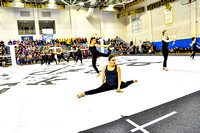 Somerville World Guard_180127_Spring-Ford-0107