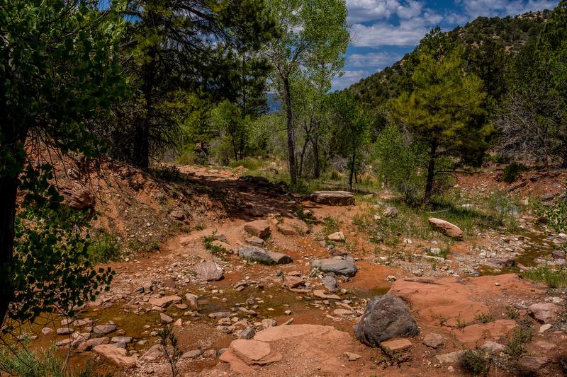 Kolob Canyon-039