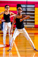 Flamingos Dance_190209_Penncrest-7303474