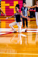 Flamingos Dance_190209_Penncrest-7303478