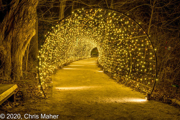 099-Tunnel of Lights