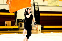 Collingswood Prism Guard-649