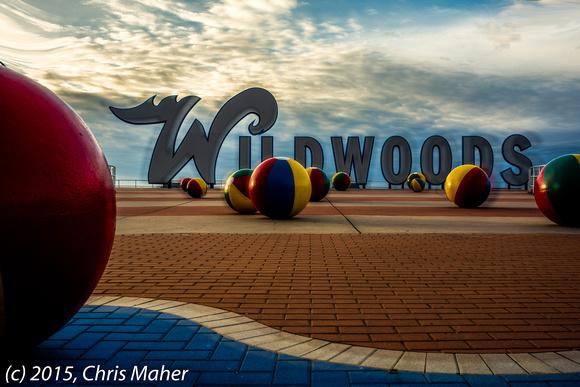 003-Wildwoods Dreamscape