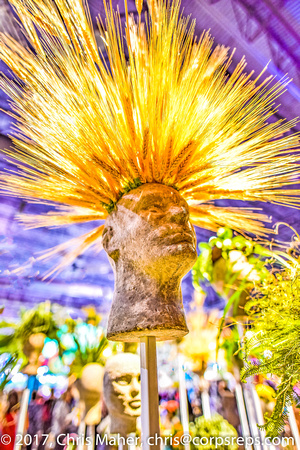 011-Big Hair - Philadelphia Flower Show