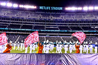 Dartmouth_171111_MetLife-7104