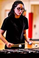 Reading Percussion_180210_Penncrest-1573