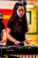 Reading Percussion_180210_Penncrest-1576