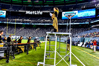 Quakertown_161112_MetLife-4772