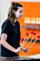 Great Valley Percussion_170311_Perkiomen Valley-8045