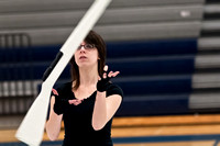 Collingswood Prism Guard-092